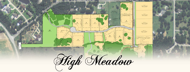 High Meadow of Flower Mound